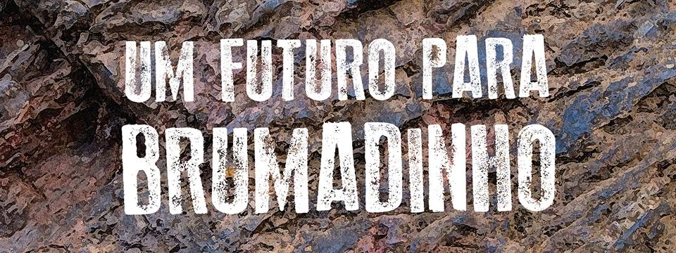 Um futuro para Brumadinho