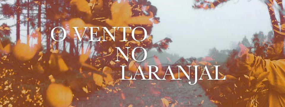 O vento no laranjal brasileiro